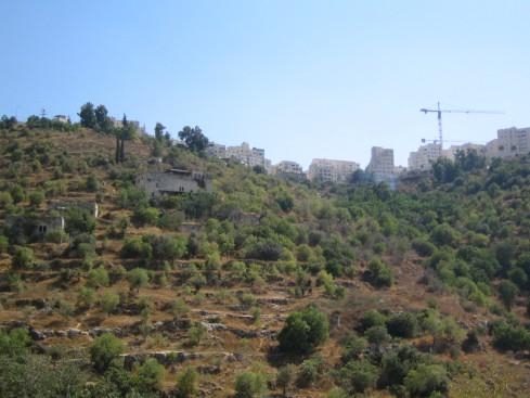 Lifta village hillside
